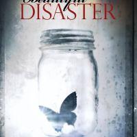 Beautiful Disaster: An Addictive New Adult Romance
